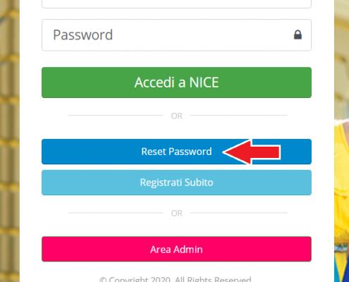 reset password nice
